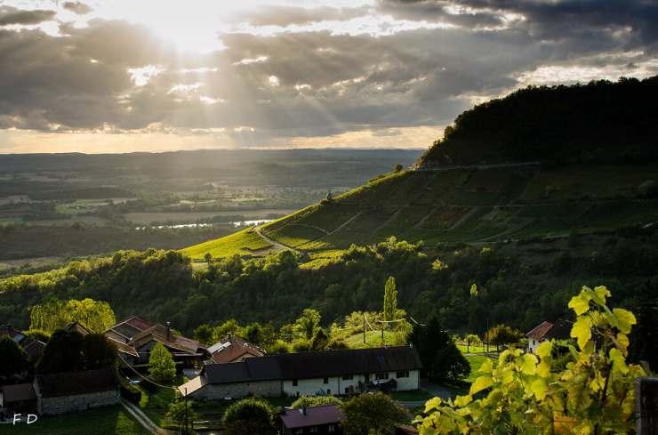 Maison Bonnard chez Ecluse mai 2019 (2)